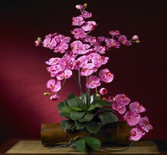 Dark Pink Phalaenopsis Silk Orchid Flower w/Leaves Stems)-Our Nearly Natural Phalaenopsis Silk Orchid Flower w/Leaves have established flowers, new Silk Orchids, Phalaenopsis Orchid, Silk Flowers, Bouquet Flowers, Orchid Flower Arrangements, Silk Floral Arrangements, Christmas Door Hangings, Wooden Roses, Hanging Plant Wall