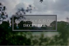 Go Wildly & Slow this December - Tips on how to slow down and keep the spirit of adventure alive. Slow Living, Slow Down, My Life, December, Neon Signs, Dreams, Adventure, Spirit, Tips