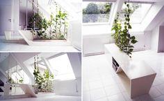 Grüne Wand-Winter Garten Sichtschutz nachhaltig Raumteiler Ideen