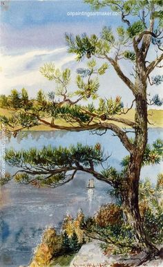 Charles De Wolf Brownell Tree and Sailboat, Lyme, Connecticut, painting Authorized official website
