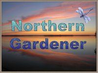 Northern Exposure Gardening: Plant List: Hardy Perennials for the North (Zone 1).. also one of my favourite gardening blogs