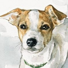 Custom Dog Watercolor Portrait by david scheirer