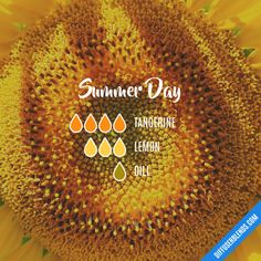 Summer Day - Essential Oil Diffuser Blend