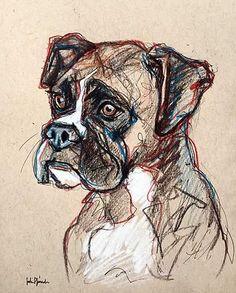 Pet Portrait Sketches Duke the Boxer Pencil, Colored Pencil and Ink www.juliepfirsch.com #boxers #art #portraits