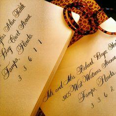 Splendid Calligraphy font