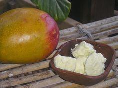 La manteca de mango se pueden utilizar directamente sobre la piel o incorporarla como ingrediente en distintos preparados cosméticos...