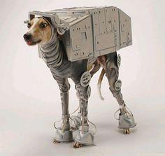 hahaha poor dog dressed up like an AT-AT from Star Wars