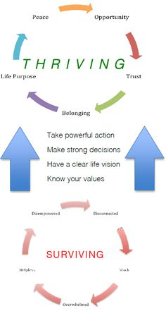 Coaching Model: From Surviving to Thriving