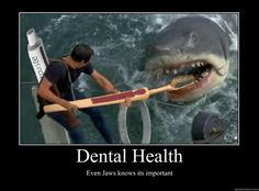Dental Health, even sharks knows it's important #sharkweek The Center for Pediatric Dentistry & Orthodontics | #Brookline | #MA | http://www.pediatricdentalcare.com/