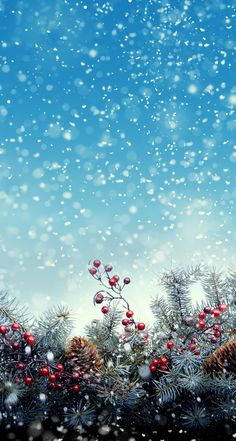 Christmas snow wallpaper background. G;)