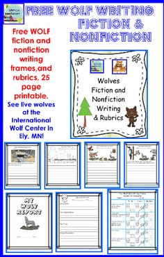 Math homework help wolf