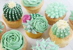 """From Amanda at The Inspired Home: """"Creating a succulent cupcake is as fun as it is easy. Just a few simple cake decorating tips and your favorite buttercream are all you need for this delicious and beautiful cupcake design. Frost Cupcakes, Cupcakes Flores, Cupcakes Design, Cake Designs, Garden Cupcakes, Succulent Cupcakes, Garden Theme Cake, Cupcake Cakes, Cactus Cupcakes"""