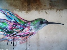 Bird Street Art on the Streets of Brazil by L7m   Colossal...tattoo inspiration