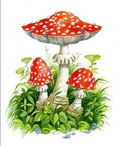 Mushroom Drawing, Mushroom Art, Nature Illustration, Botanical Illustration, Labor Day Crafts, Mushroom Tattoos, Learn To Paint, Painting For Kids, Stone Art