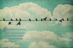 Matthew 6:26 Look at the birds. They don't plant or harvest or store food in barns, for your heavenly Father feeds them. And aren't you far more valuable to him than they are?