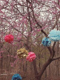 Zaney Love: tissue pom poms Tissue Pom Poms, Gardening, Painting, Art, Art Background, Lawn And Garden, Painting Art, Kunst, Paintings