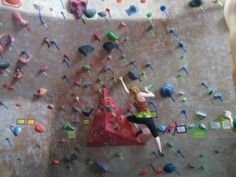 Rock climbing exercises for training at home hypergo #climbing #sports Best wipes for sports Go to hypergo.com