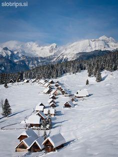 Winter paradise in Slovenia #pokljuka #zajamniki