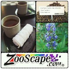Vitex Chaste Tree Berry tea.   Fresh. Pure.   TerraVita tea is your tea.   http://www.zooscape.com/cgi-bin/maitred/GreenCanyon/questc100044/r18   #vitex #chaste #berry #tree #teatime #teacup #teewoche #teatray    #food #foodporn #yum #instafood #yummy #instagood #photooftheday #breakfast #fresh #tasty #foodie #delicious #eating #foodpic #foodpics #eat #hungry #foodgasm #hot #foods