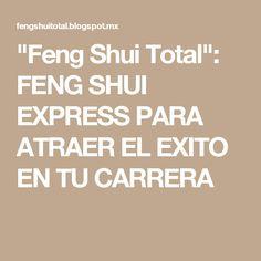 """""""Feng Shui Total"""": FENG SHUI EXPRESS PARA ATRAER EL EXITO EN TU CARRERA"""