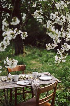 When the cherry trees bloom. Deco Champetre, Fleurs Diy, Spring Aesthetic, Cherry Tree, Slow Living, Dream Garden, Outdoor Dining, Garden Inspiration, Outdoor Gardens