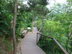 산책로를 따라 설치된 나무테크와 벤치