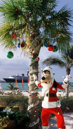 Disney's Castaway Cay decorated for Christmas!  Don't miss out on the magic and excitement of a Disney cruise!  Call us today to book the vacation of your dreams!  Globe Travel, located in Bristol, CT, is the authorized Disney vacation planner you've been looking for!  860-584-0517