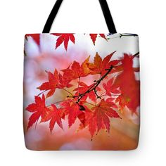"Autumn Pastel Tote Bag 18"" x 18"""