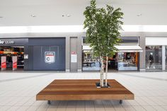 woody bench - shopping mall - mmcité furniture