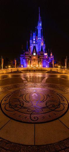 Plan a vacation to Tokyo Disneyland & DisneySea!