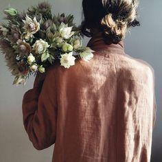 'Blushing Bride' Protea.