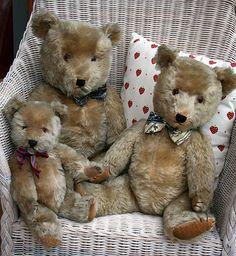 Chiltern Hugmees, English teddy bears, 1950, 1940 and 1930.
