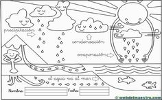 evaporación condensacíón y precipitación Archives - Web del maestro Easy Science, Science For Kids, Science And Nature, Activities For Kids, Science Biology, Teaching Science, Social Science, Book Report Templates, Bilingual Classroom