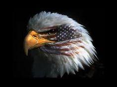 Risultati immagini per eagle usa