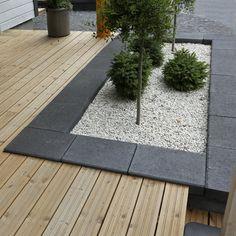 Modern Landscaping, Backyard Landscaping, Detached House, Home Decor Accessories, Landscape Design, Terrace, Outdoor Living, Sidewalk, Plants