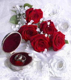 Marianna Lokshina - Wedding_LMN34028