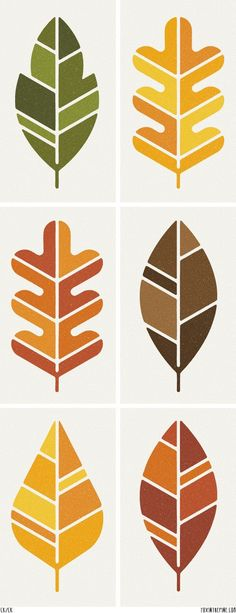 Patterns for different leaves