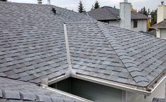 Shingle Replacement To Residential Home In Calgary Alberta. Flat Roof Repair, Bragg Creek, Cedar Roof, Red Deer, Calgary, Building, Outdoor Decor, Outlines, June