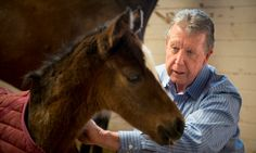 Could foals shed light on autism? Disorder that causes newborn horses to seem detached may have links to human condition  http://www.dailymail.co.uk/sciencetech/article-2939994/Could-foals-shed-light-autism-Disorder-causes-newborn-horses-detached-links-human-condition.html