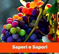 Saperi e Sapori: percorso enogastronomico
