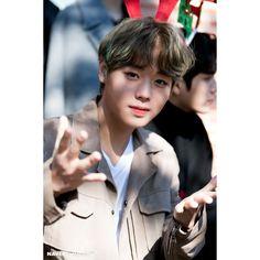 Naver X Dispatch Wanna One Christmas 🎄☃️❄️🎀 Korean Boy Bands, South Korean Boy Band, Jinyoung, Baby Park, Cho Chang, Park Bo Gum, Lai Guanlin, Fandom, Kim Jaehwan