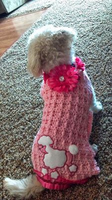 A Blinged-Up Crochet Dog Sweater - The Crafting Secretary