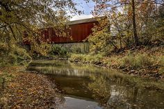 Red Covered Bridge by Jeff Burton. The Red Covered Bridge is a wooden covered bridge that runs over Big Bureau Creek, north of Princeton, Illinois. The 149-foot (45 m) span is one of five remaining covered bridges in Illinois, and it is still open to traffic. The bridge was added to the U.S. National Register of Historic Places on April 23, 1975. The color of the fall foliage accentuates the red of the covered bridge which peaks from behind the tall trees along the creek bank.