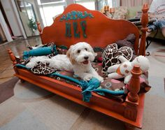 """This was our first bed made from a vintage coffee table made for Hefner! Isn't he adorable. All our beds are """"Feline Friendly"""" Puppy Beds, Dog Beds, Puppy Store, Dog House Bed, Dog Hotel, Pet Steps, Diy Dog Bed, Dog Furniture, One Bed"""