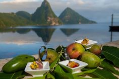 June is Mango Madness Month in St Lucia - Mango Madness Festival at Anse Chastanet Resort June 24 - 28, 2016