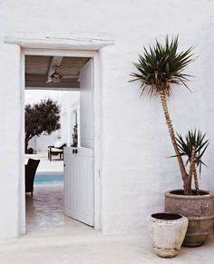 Barn door, plants
