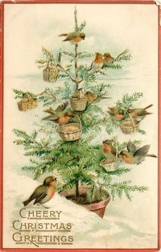 Vintage Cheery Christmas Greetings postcard - love all the little birds, each with their own baskets #vintage #holiday #illustration
