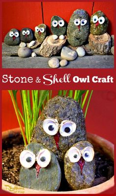 Stone and Shell Owl Craft -- This stone and shell owl craft is fun and easy to do. All you need is a few simple materials and a few spare minutes. They look great displayed sitting in potted plants and on mantles and windowsills. They also make a lovely addition to nature tables and can be used for pretend play.