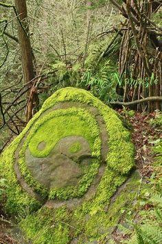 Yin Yang mossy rock