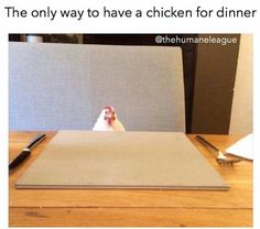 the only way to have a chicken for dinner #vegetarian #vegan #crueltyfree